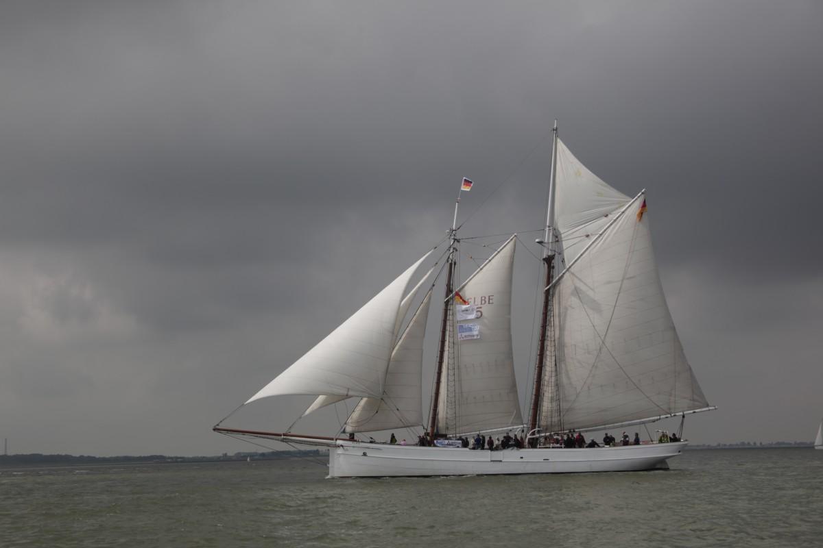 Lotsenschoner No. 5 Elbe